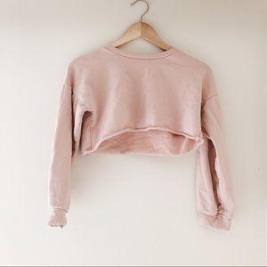 PLT Petite Crop Sweater